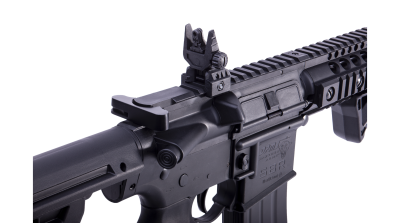 DPMS SBR (Remanufactured) rear sights
