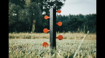 Crosman Dueling Tree Target