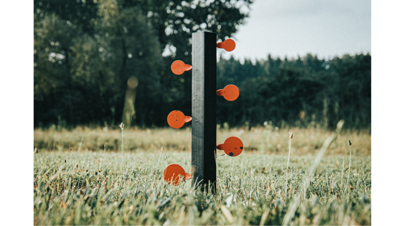 Crosman® Dueling Tree Target